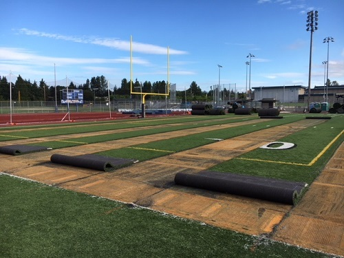 Synthetic turf cut into strips
