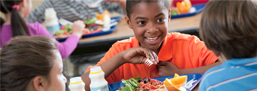 photo from https://www.fns.usda.gov/nslp/national-school-lunch-program-nslp